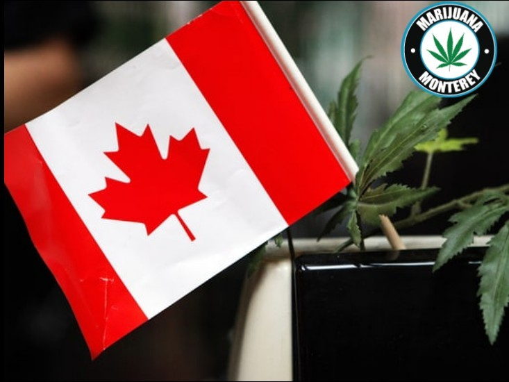 Federal Government Gives Health Canada Bulk Of Marijuana