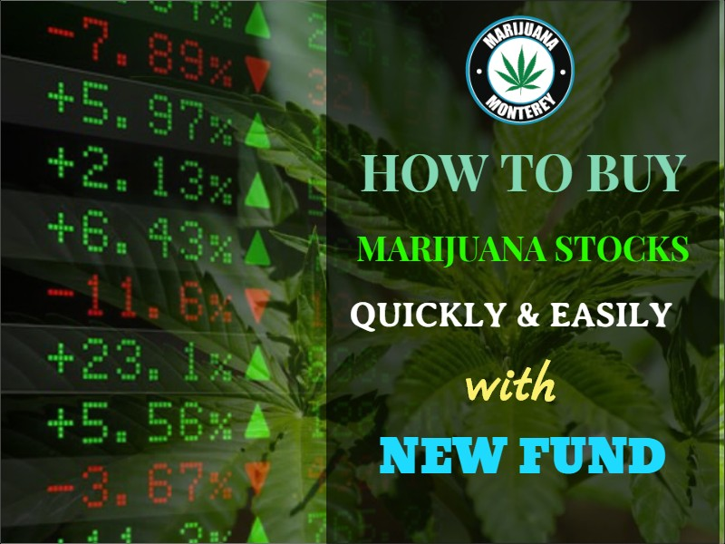 How To Buy Marijuana Stocks Quickly And Easily With This New Fund