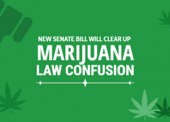 How New Senate Bill Will Clear Up California Marijuana Law Confusion
