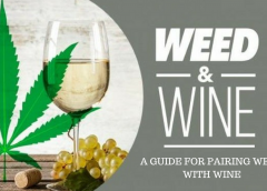 A Guide for Pairing Weed with Wine